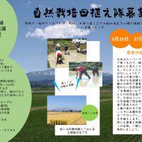 農業体験 〈田植え隊〉
